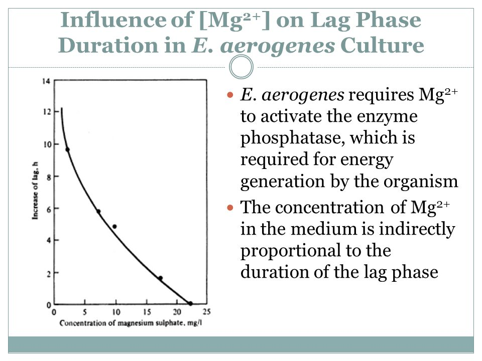 Influence of [Mg2+] on Lag Phase Duration in E. aerogenes Culture